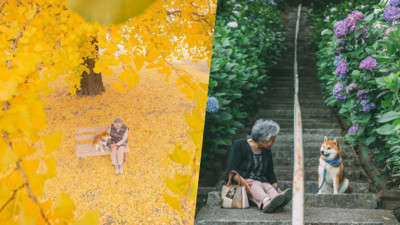 「奶奶,阿福,花海。」日本攝影家回鄉 陪奶奶拍遍餘生所有風景