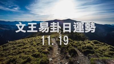 文王易卦【1119日運勢】求卦解先機