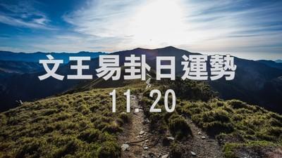 文王易卦【1120日運勢】求卦解先機