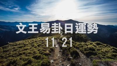 文王易卦【1121日運勢】求卦解先機