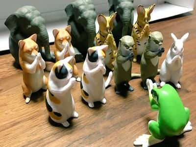 執念男死要轉到「合掌青蛙」 第13隻扭中..詭異低頭邪教誕生!