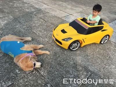 弟弟開車亂撞 阿金假碰瓷真教育