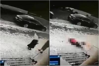 冰柱墜11樓 女子路過爆頭亡
