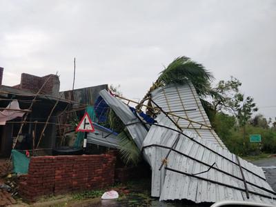 少女生理期被趕出門 颱風天遭椰子樹壓死