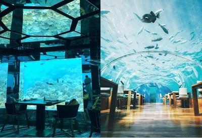 盤點全球4間海底餐廳!跟情人來場浪漫的「水底情深」~
