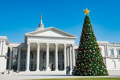 奇美博物館第一棵聖誕樹誕生