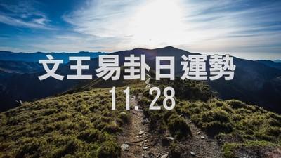 文王易卦【1128日運勢】求卦解先機