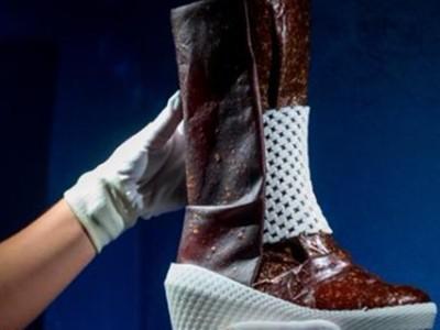 火星靴已設計完成!太空員的「臭腳汗混合真菌孢子」即可踏上火星