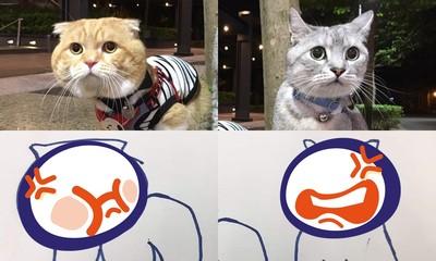他PO描摹愛貓圖 網笑:還好你放棄畫家夢