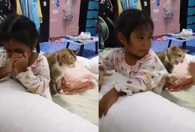 小女孩被媽罵哭 主子幫忙打回去