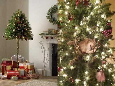 每到聖誕貓皇就玩瘋!英國推「防貓聖誕樹」 弄成半棵沒比較省事啊