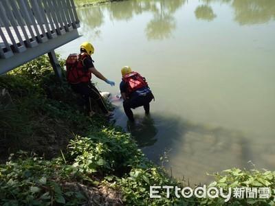 癌婦巴克禮公園生態池投水亡 岸邊留遺書