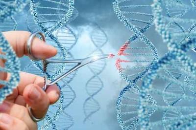 治遺傳性失明 美基因編輯臨床實驗