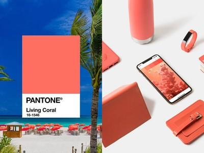 Pantone公佈2019年度色:珊瑚紅