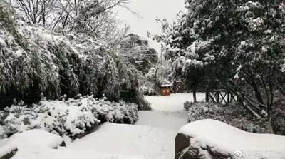 杭州初下「雪子」 網:大雪快來!