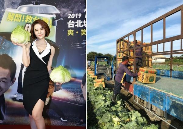 ▲東購高麗菜義賣。(圖/業者提供)