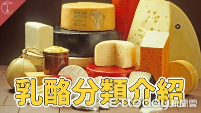 乳酪百百種 完整分類解析給你聽