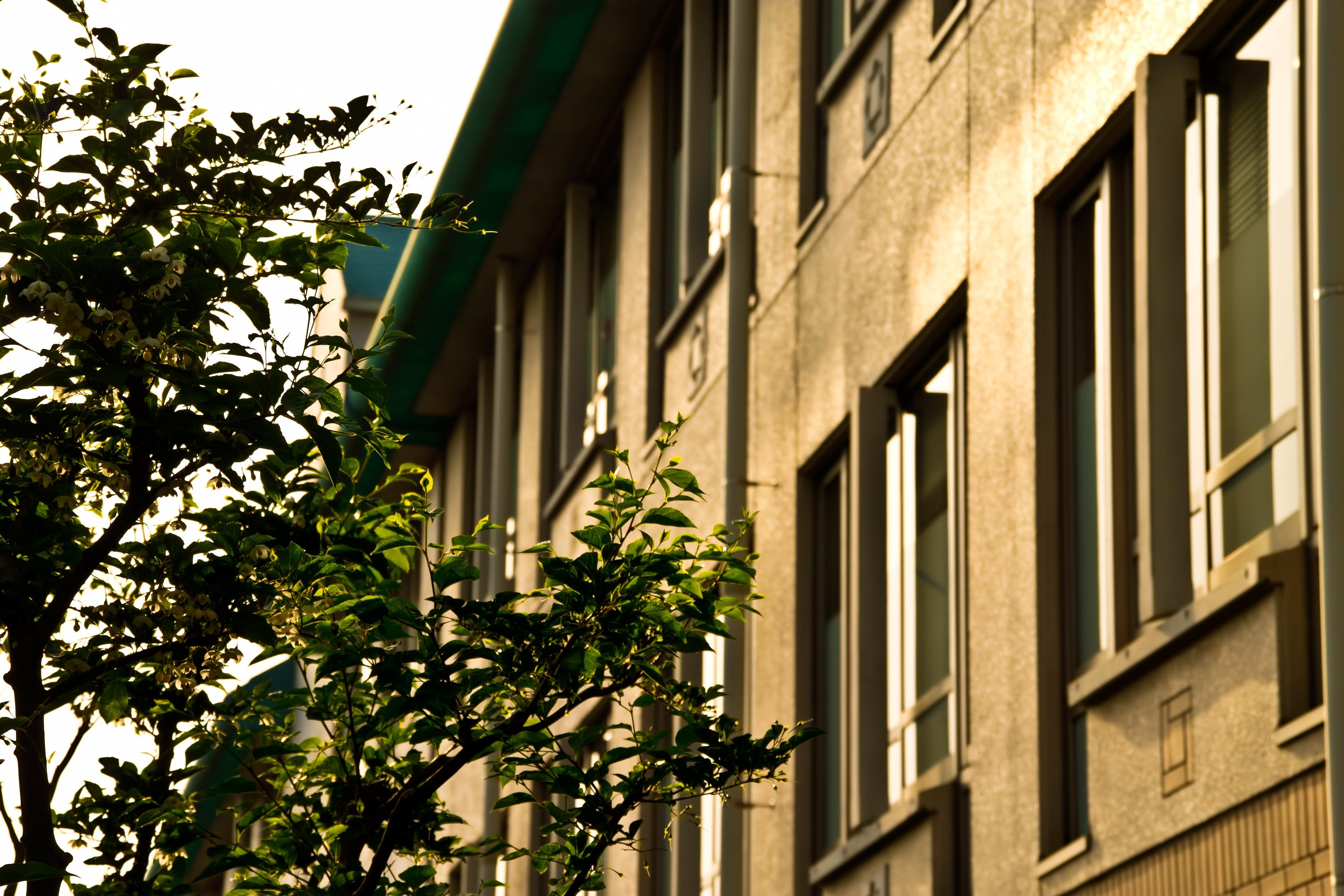 ▲▼學生宿舍,公寓,舊公寓,窗邊。(圖/PAKUTASO)
