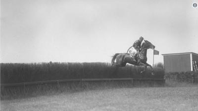 騎師死亡仍奪冠 獲金氏世界紀錄