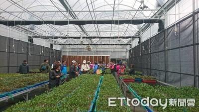 龍泉苗圃温室啓用 培育珍稀樹苗