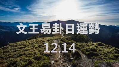文王易卦【1214日運勢】求卦解先機