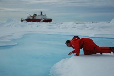 北極海古老冰層消失95%