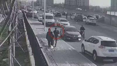 北京詐騙新招踹狗賴主人索賠