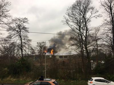 動物園大火「屋頂都燒破」!百遊客狂逃
