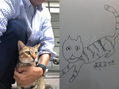 陳其邁畫傻眼貓咪 小米淚奔