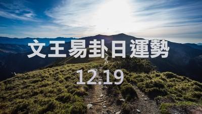 文王易卦【1219日運勢】求卦解先機