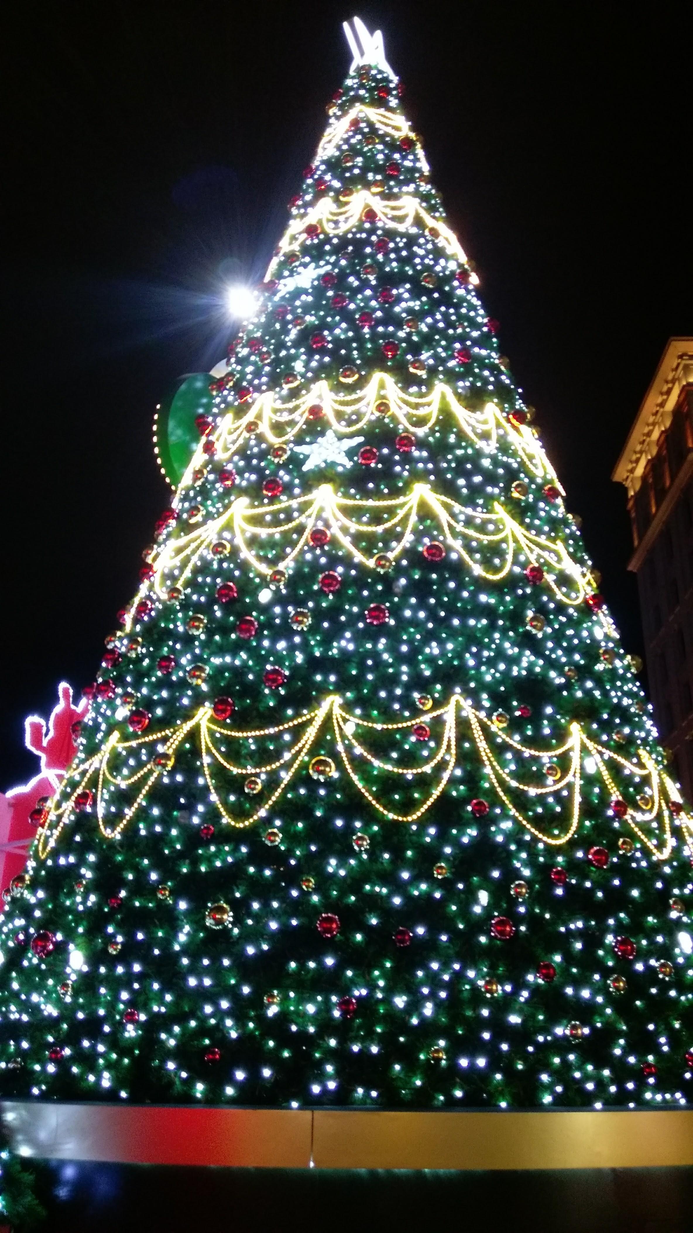 ▲▼聖誕節交換廢物。(圖/小檸檬供稿專用)