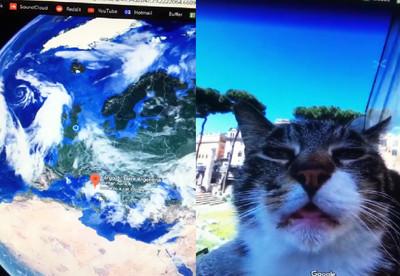 義大利地圖放大放大...驚見萌貓