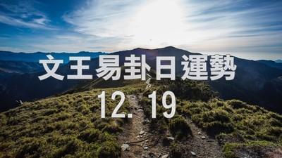 文王易卦【1220日運勢】求卦解先機