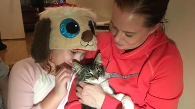 快遞紙箱裡的貓憋不住了 被寄到1000公里外才靠尿濕脫身