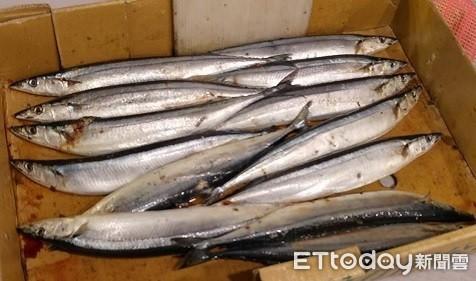 福島核廢水入海「秋刀魚首當其衝」!農委會:若污染就要擔心了 | ETto