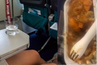 立委爆知名航空「飛機餐只有豬排飯」