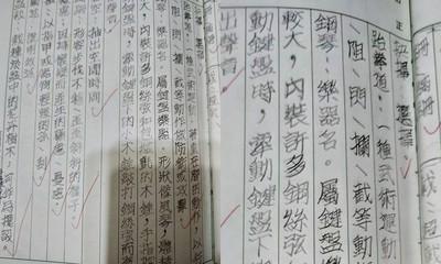 小六妹手寫「印刷系硬體字」 網驚:美炸