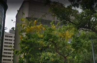 北市五星飯店 驚傳陸客墜15樓不治