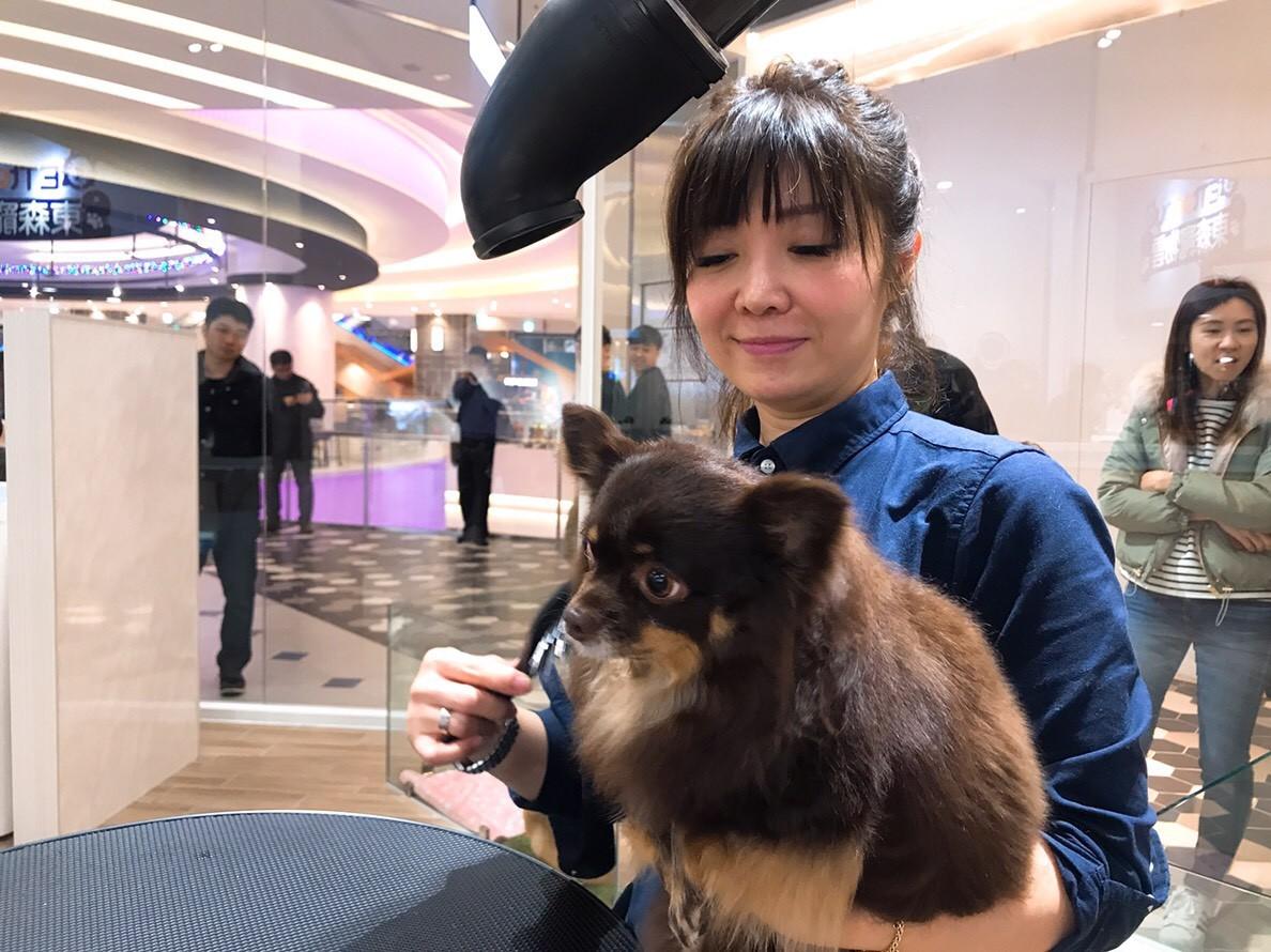 東森寵物雲概念店,東森寵物雲商店,大直ATT,ATT 4 Recharge,寵物美容。(圖/ETtoday)