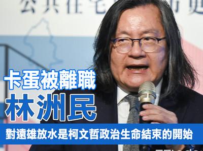林洲民:對遠雄放水是柯文哲政治生命結束的開始
