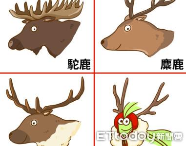 4鹿對決!誰幫聖誕老人拉雪橇?