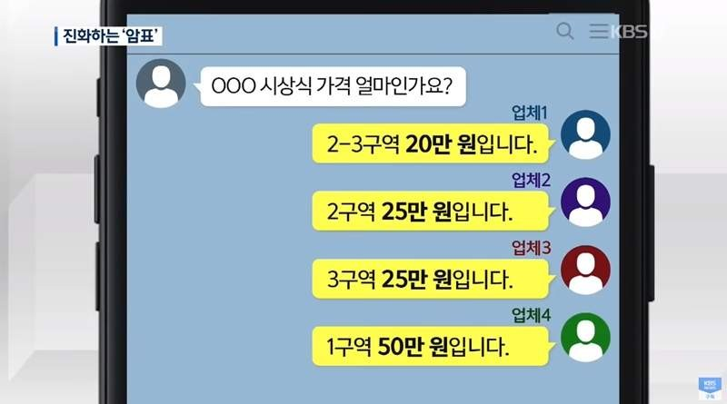 大檸檬用圖(圖/翻攝自YOUTUBE@KBS News)