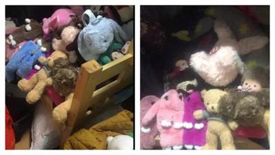 「抓」88個娃娃 夫妻倆10天後被逮