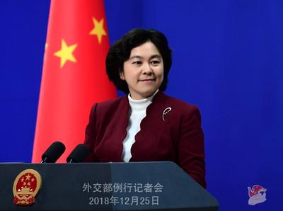 法關切拘留加國公民 華春瑩:只關心加國人