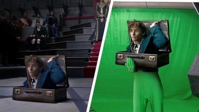 紐特「鑽出皮箱」幕後真相 下半身套羞恥綠胎衣 這畫面能看一百遍