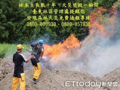 舉發森林火災 最高100萬元獎金