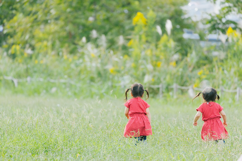 ▲雙胞胎,小孩,孩子。(圖/取自免費圖庫pakutaso)