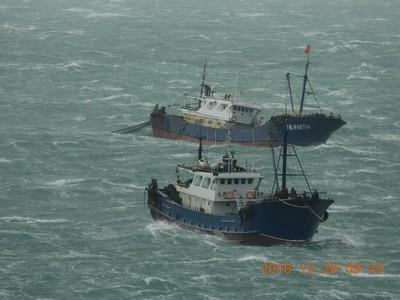 25艘陸漁船進澎湖內海 珊瑚慘遭毀壞