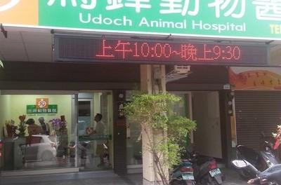 響應全台首富!獸醫院急診費漲6成