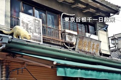 東京谷根千貓咪商品多 還有排3小時的超人氣剉冰店